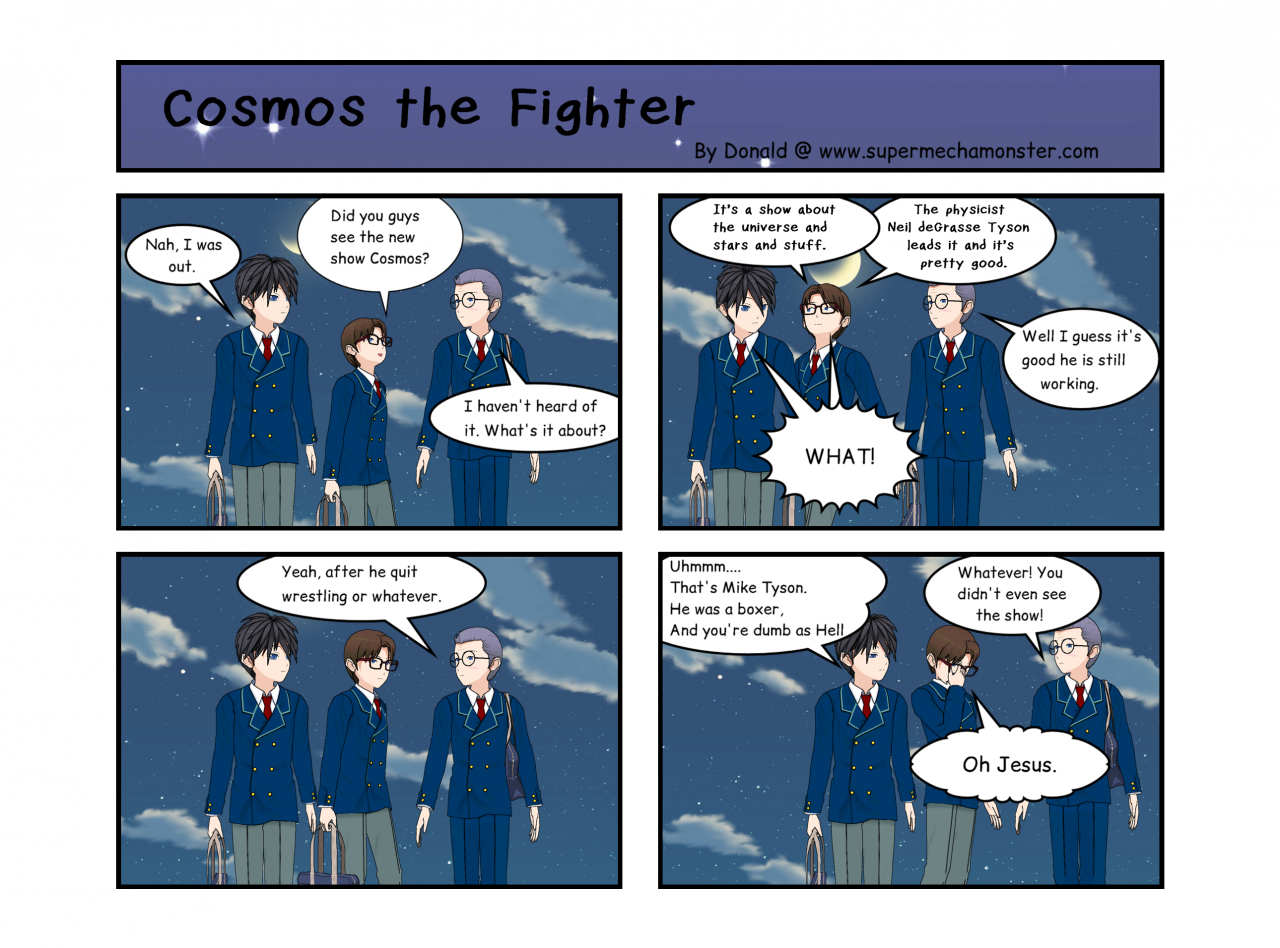 Cosmos the Fighter